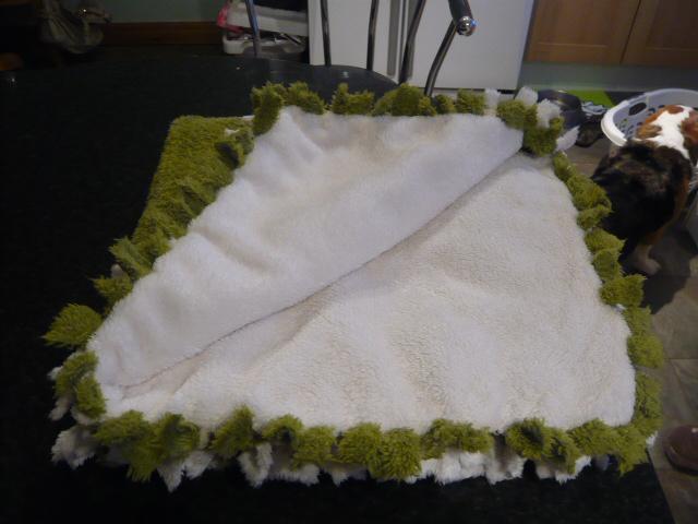 Hard Bonking On The Soft Blanket